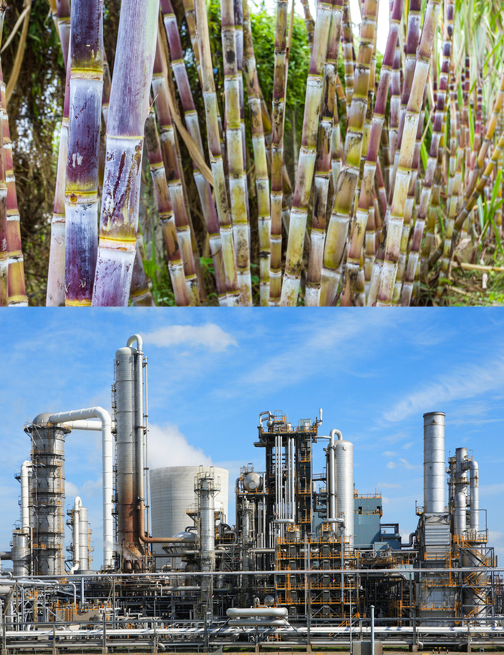 CHEMICALS FOR SUGAR INDUSTRY
